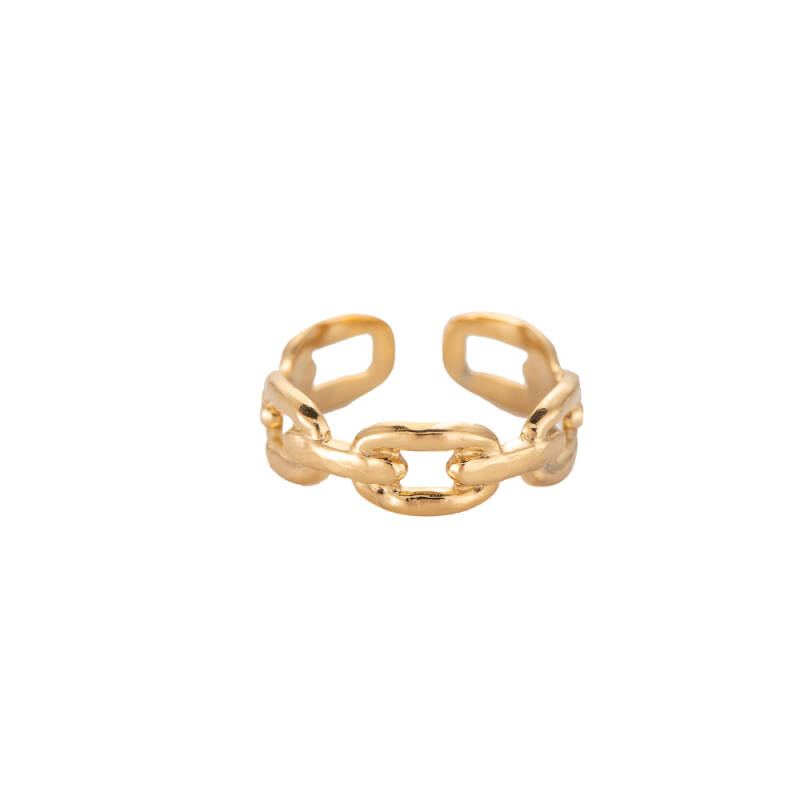 Ring Arching chain - goud
