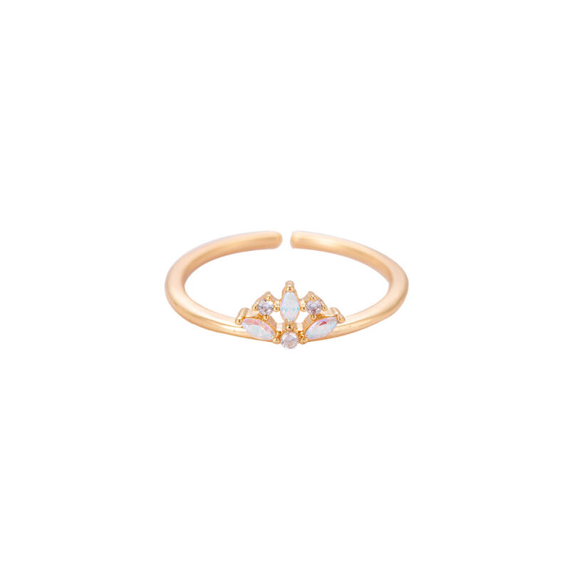 Ring Small crown - goud