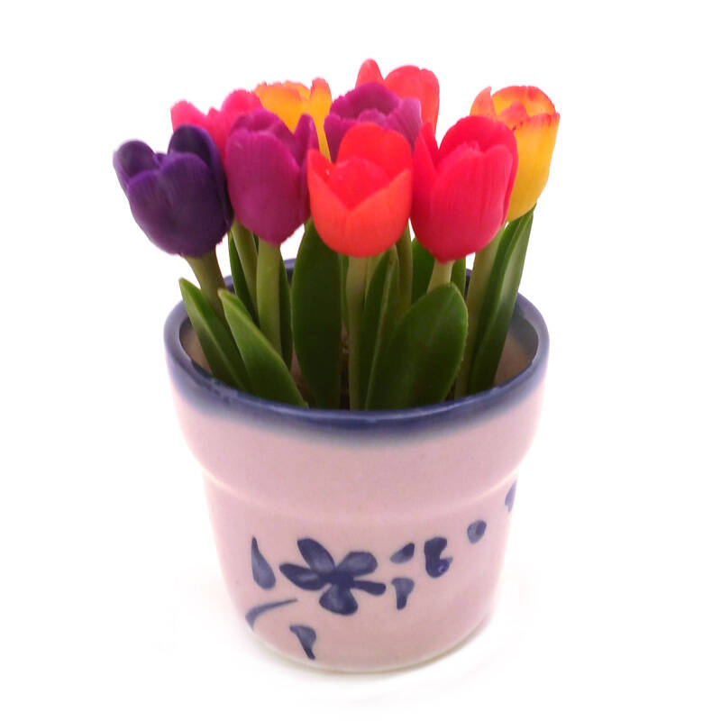 9 Tulips in pot