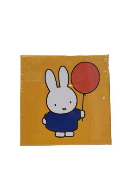 Miffy glass magnet set Colorfull