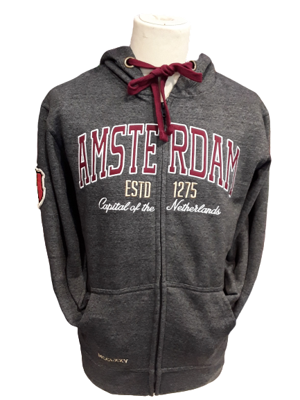 Hooded sweater with zip