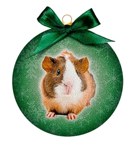 PLENTY GIFTS ORNAMENT FROSTED CAVIA 10,5X4,2X11,5 CM