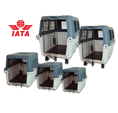 IATA Concor carrier