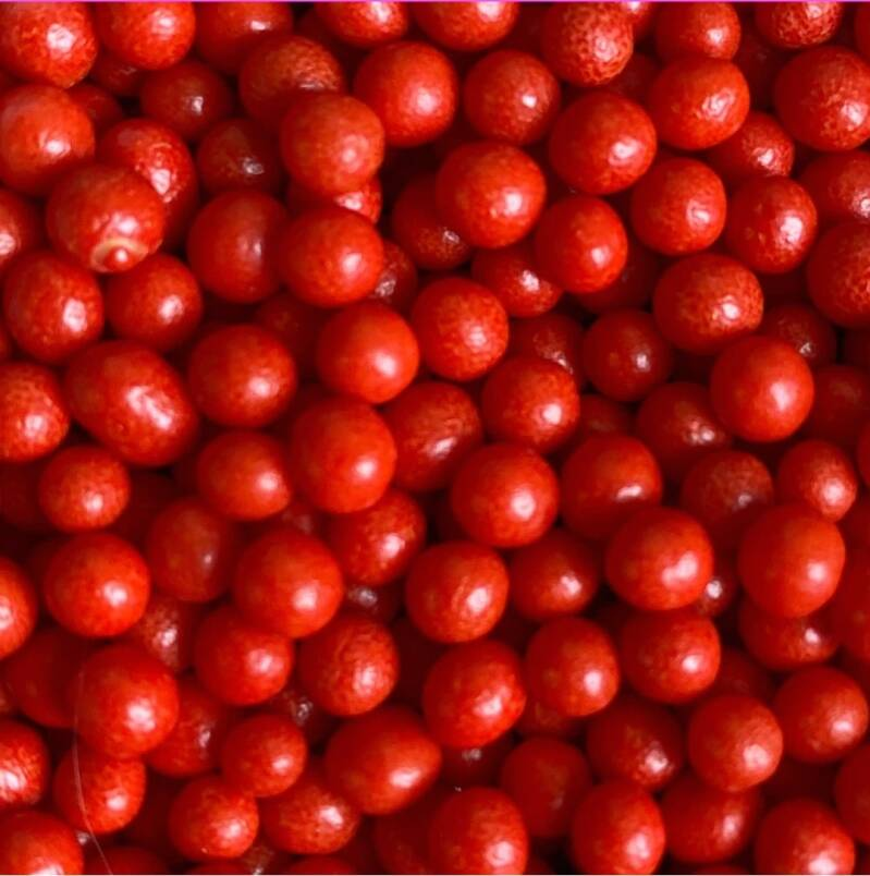 Pearls red polished