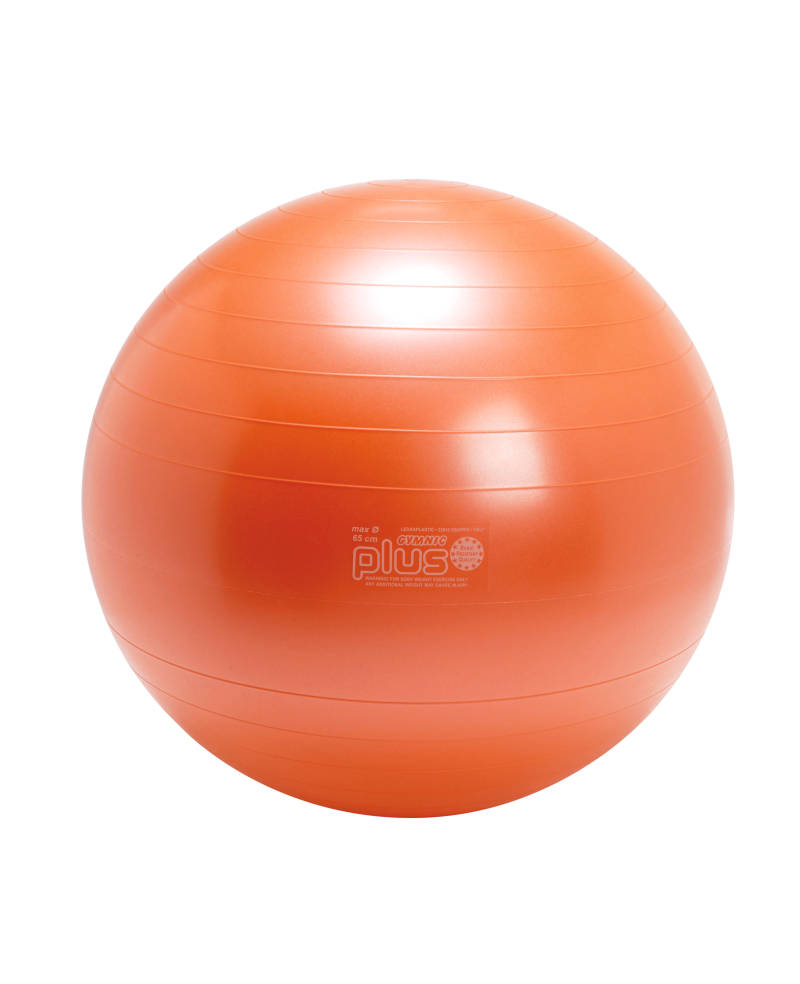 Retourgoed | Gymnic fitnessbal Plus 65 cm oranje
