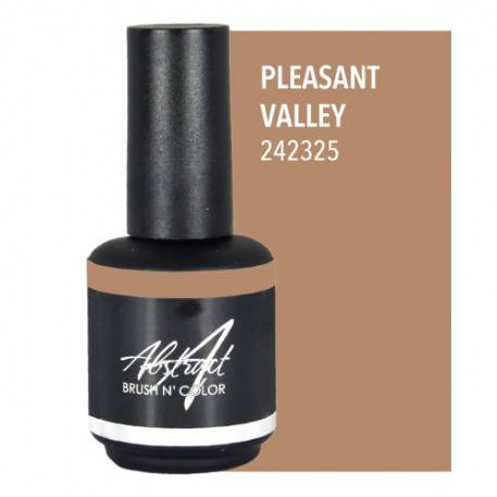 Pleasant Valley 15ml | Abstract Brush N Color