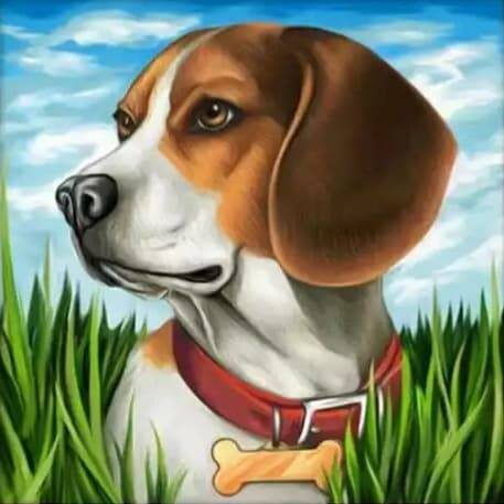 Beagle in het gras - Diamond Painting Rond