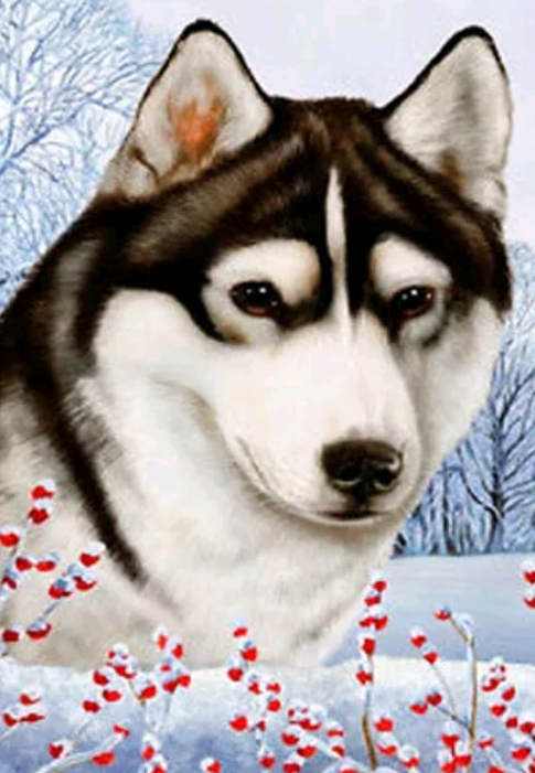 Husky , rode bloemen - Diamond Painting