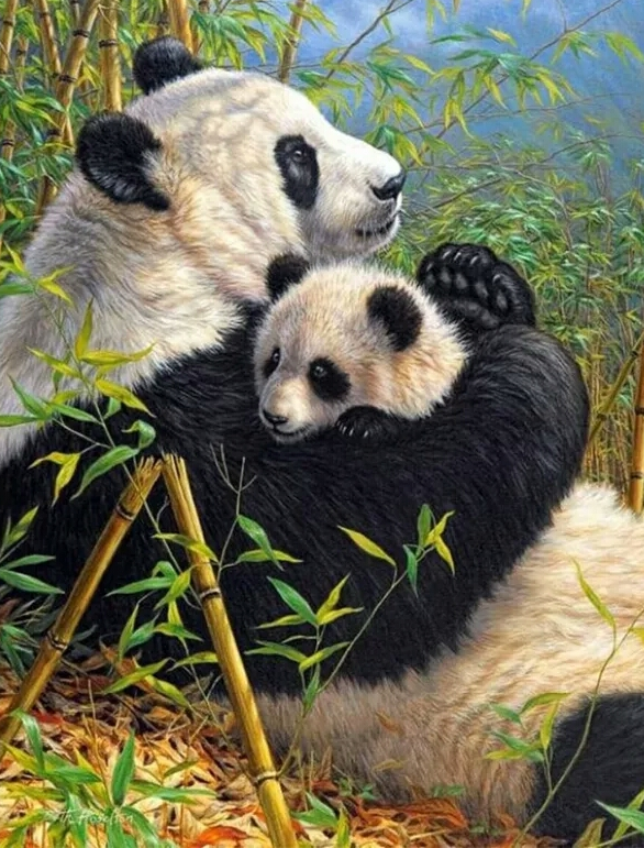 panda , baby panda - Diamond painting