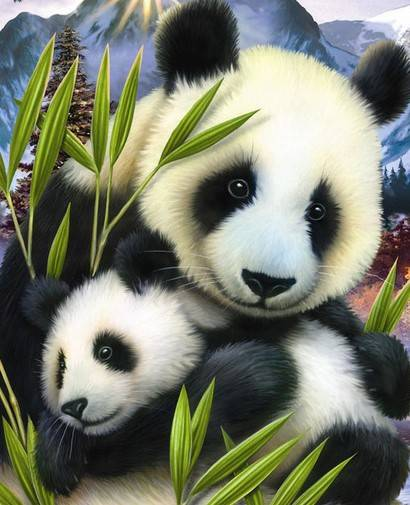 Panda met jong - Diamond Painting
