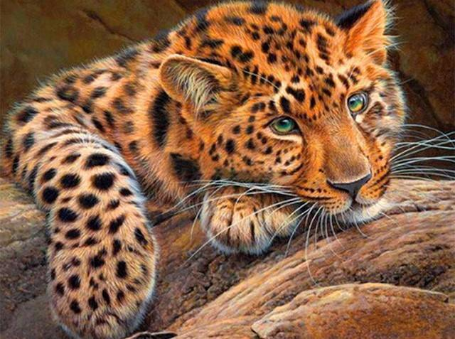 Panter - Diamond Painting