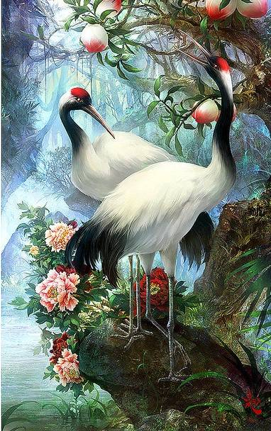 Paradijs vogels -  Diamond Painting