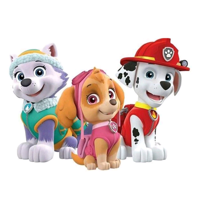 paw patrol 1 - Diamond Painting Rond
