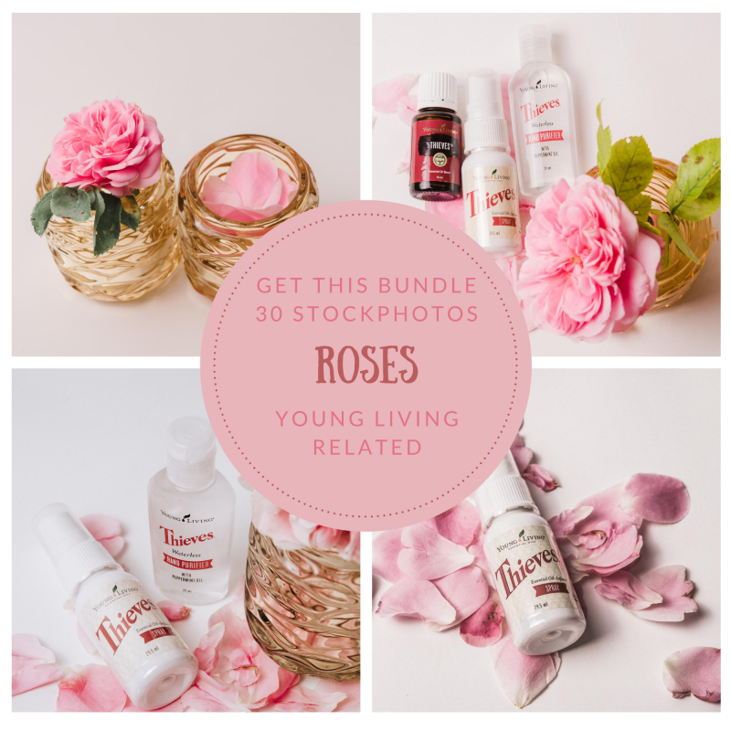 30 stockphotos roses - thieves