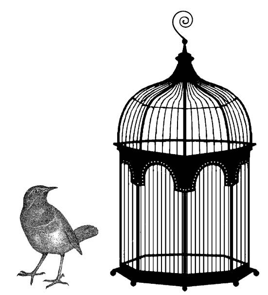 CP R587 Cage and bird