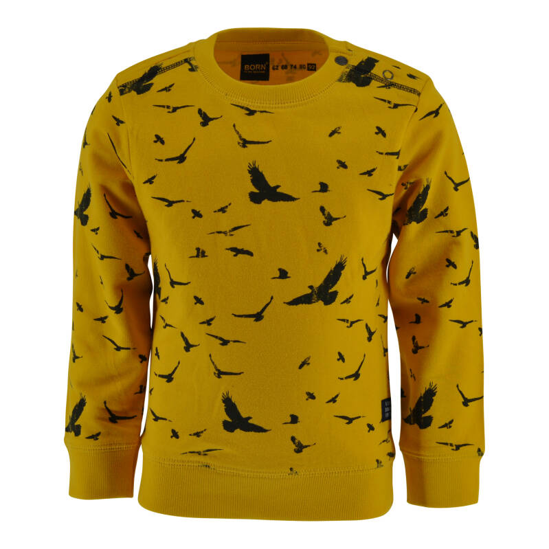 Born to be Famous Sweater Zayn - Yellow/Birds