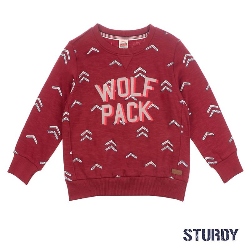 -50% Sturdy Sweater AOP / Wolf Pack - Good Fellows