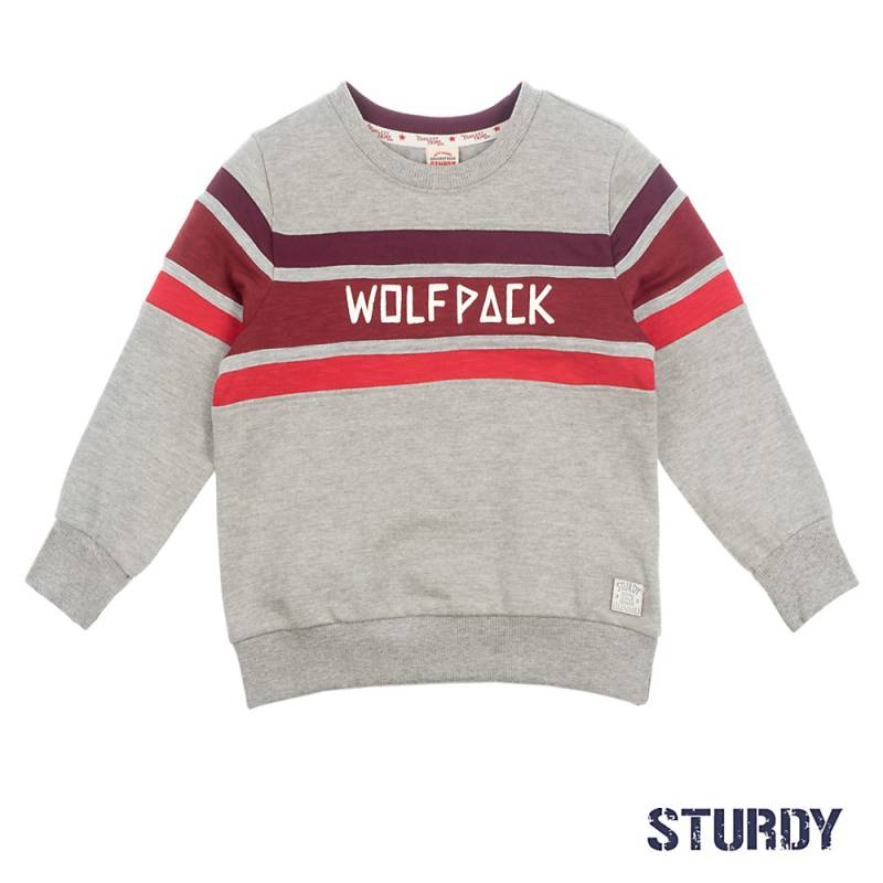 -50% Sturdy Sweater Wolf Pack - Good Fellows