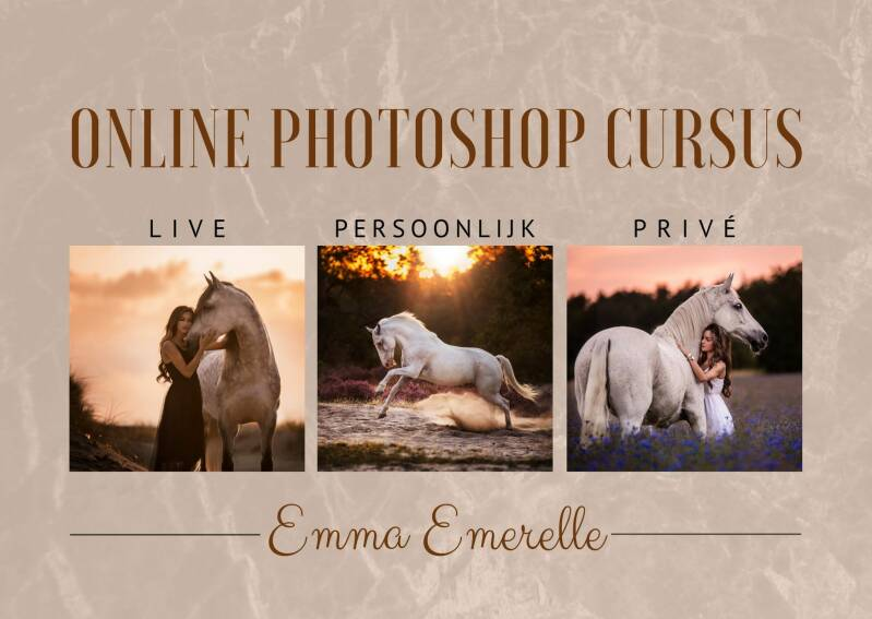 Online photoshop coach sessie
