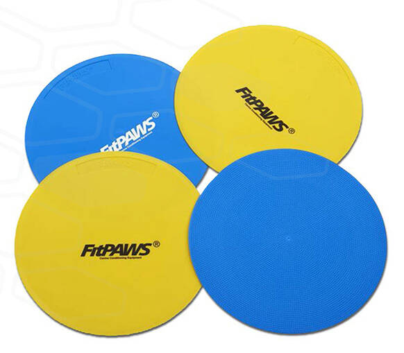 FITPAWS Targets (4 Targets)