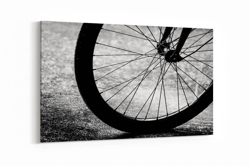 Abstract Bicycle wheel in black and white style