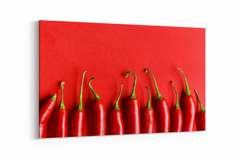 Chili pepper on red background, top view
