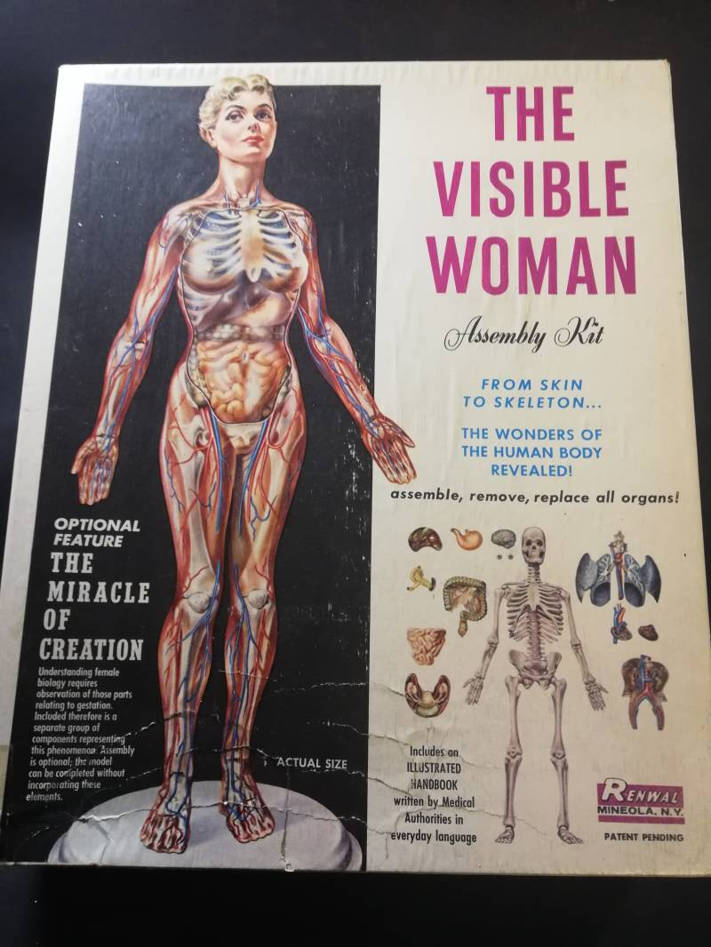 1#110. The Visible Woman. Renwal modelkit