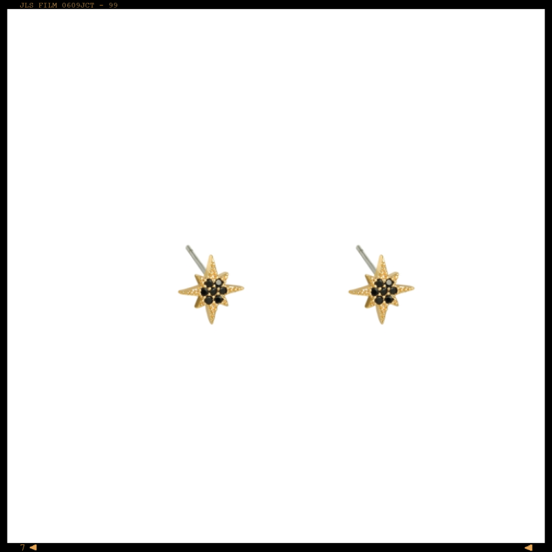 Earrings Studs Black Star