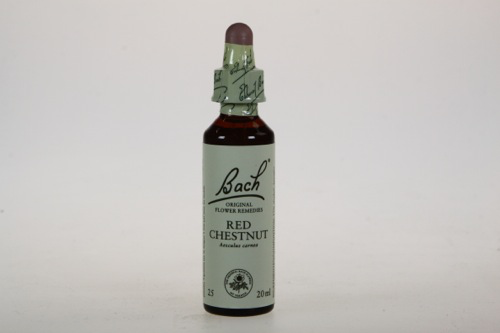 Bach Red Chestnut - Rode kast 20ml