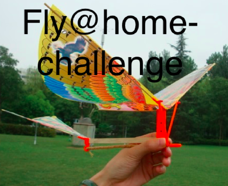 Fly@home-Challenge - 20kits