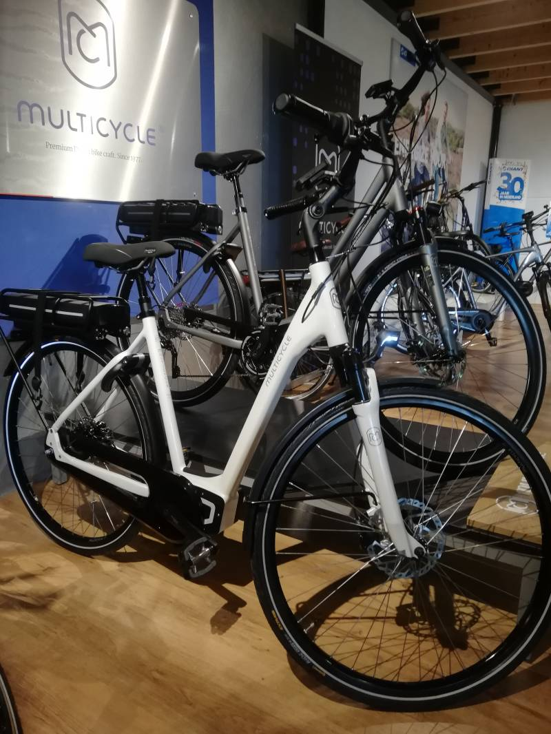 Multicycle Noble-EMB