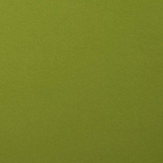 Florence - Cardstock A4 - smooth - Olive