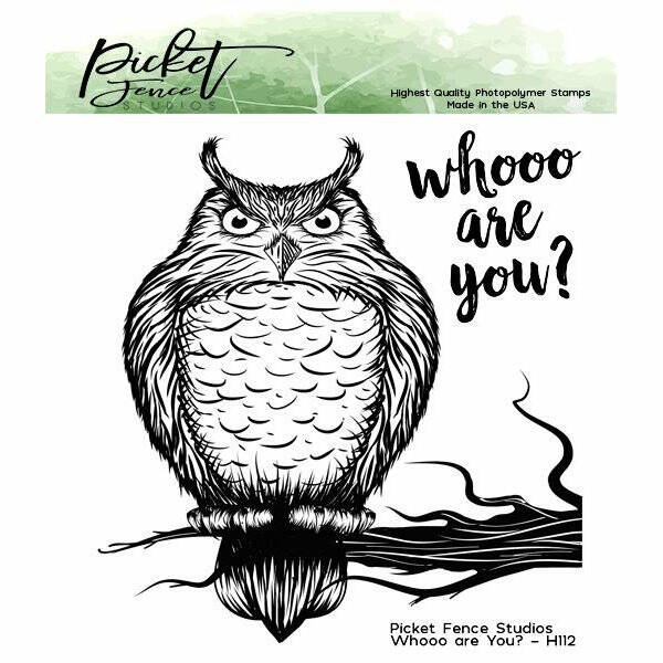 Picket Fence Studios - Whooo are You? - Clear Stamps