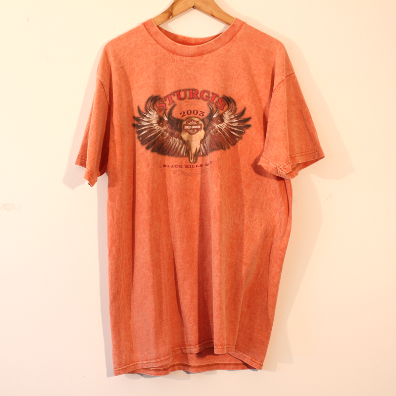22. Harvey Davidson t-shirt - size L