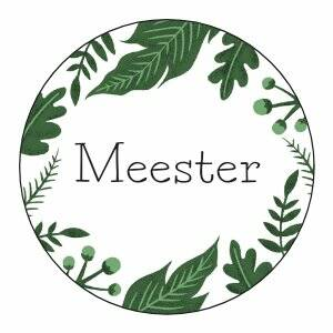 Meester | Sticker | SluitZegel