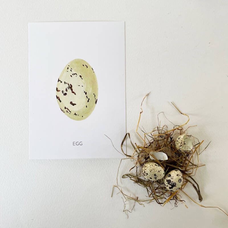 Egg A5 Art Card