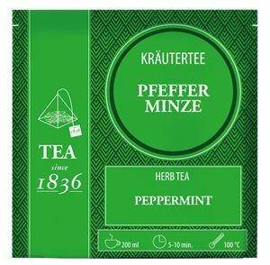 Herb Tea Peppermint