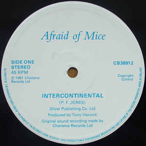Afraid Of Mice - Intercontinental
