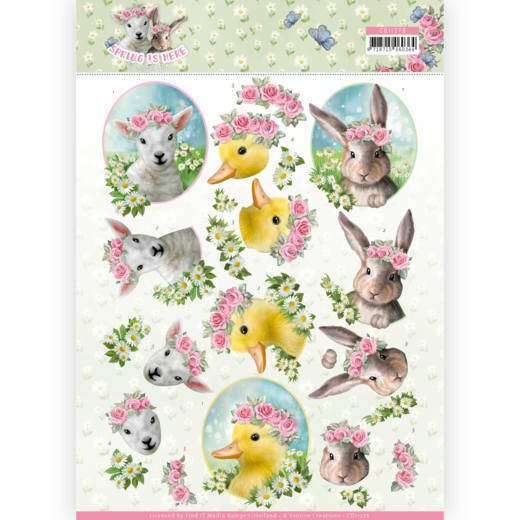 Amy Design - Spring is Here - Baby Animals - CD11276