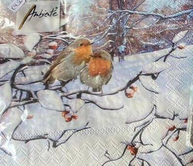 Robins on branche