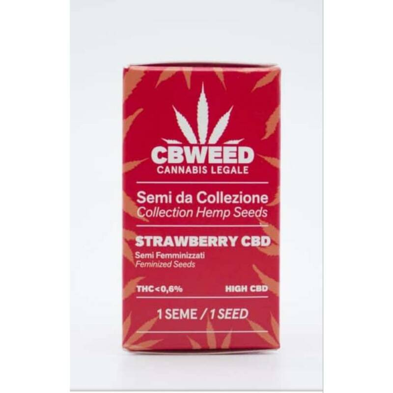 """Strawberry"" semillas feminizadas de CBD 1 semilla"