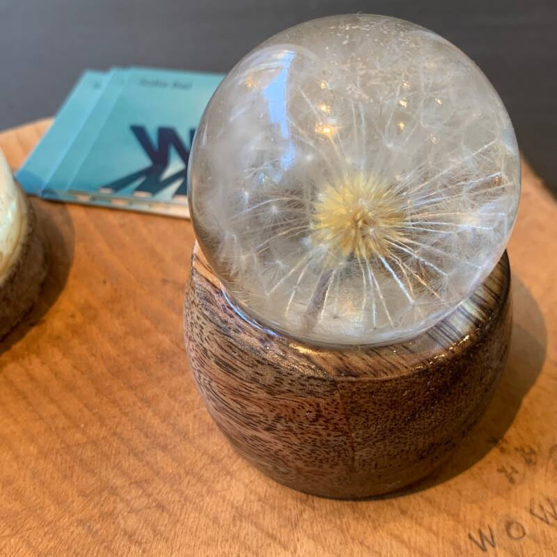 P47 sphere with real dandelion