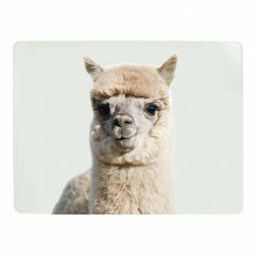 Luxe Placemats Alpaca 4*