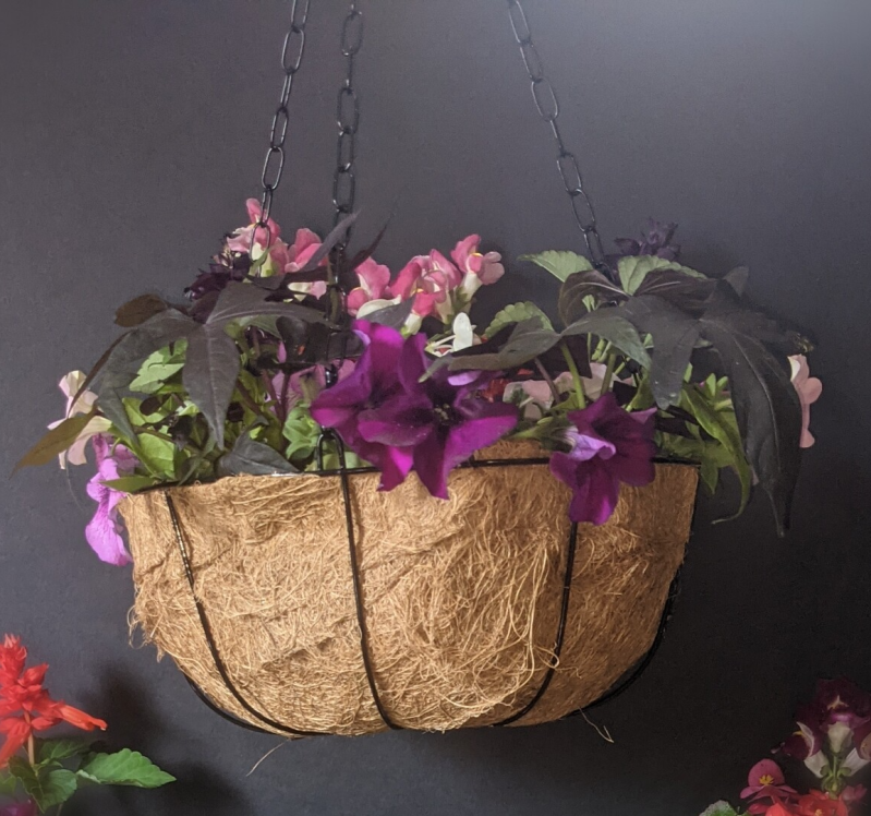 Mother's Day Hanging Basket