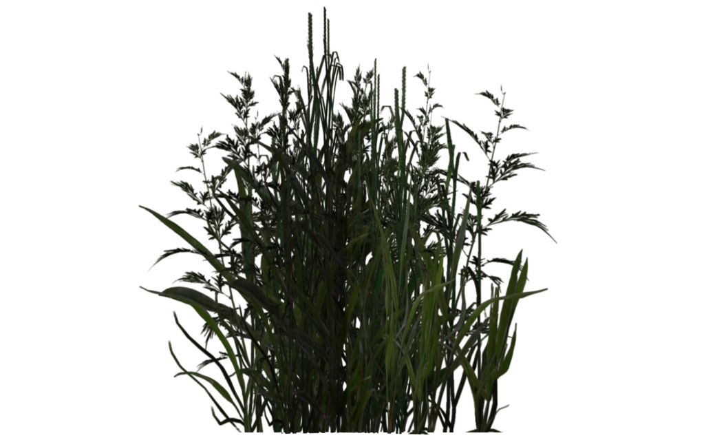 vegetation_01_by_wolverine041269-d5yfun6.png