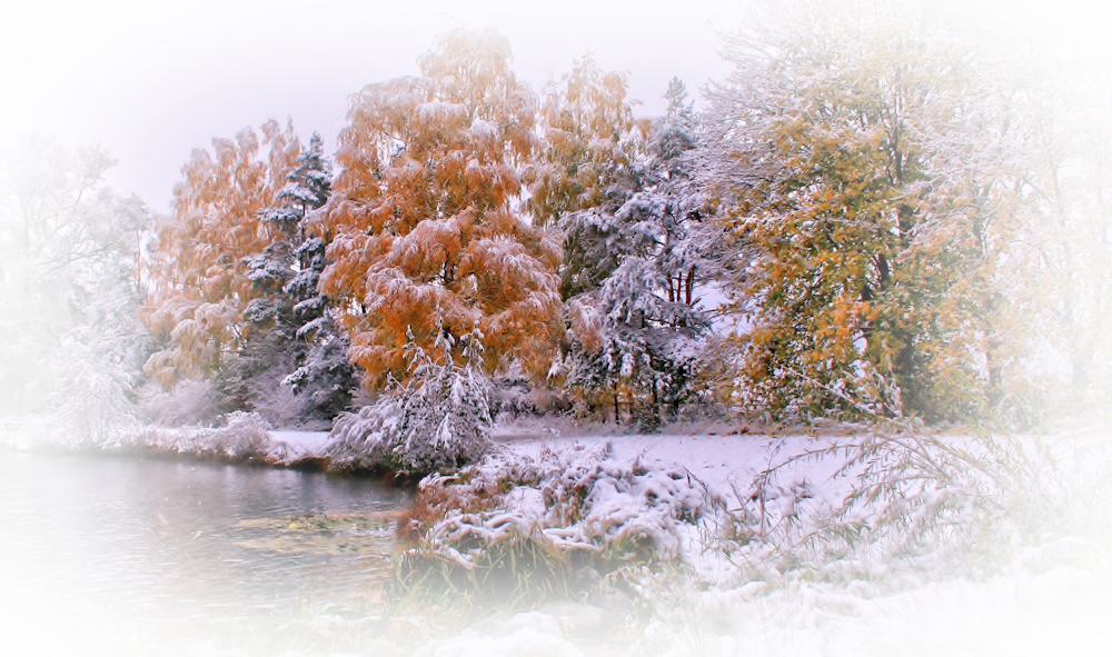 2186586-2030x1200-nature-landscapes-trees-forests-autumn-fall-seasons-winter-snow-frost-shore-lakes-grass-leaves-cold-high-resolution-images-j_orig.png