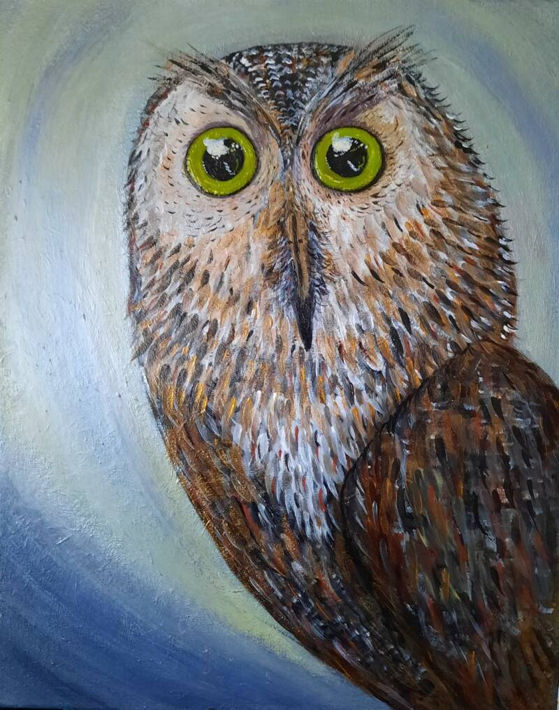 Wise Owl - Self Reflections