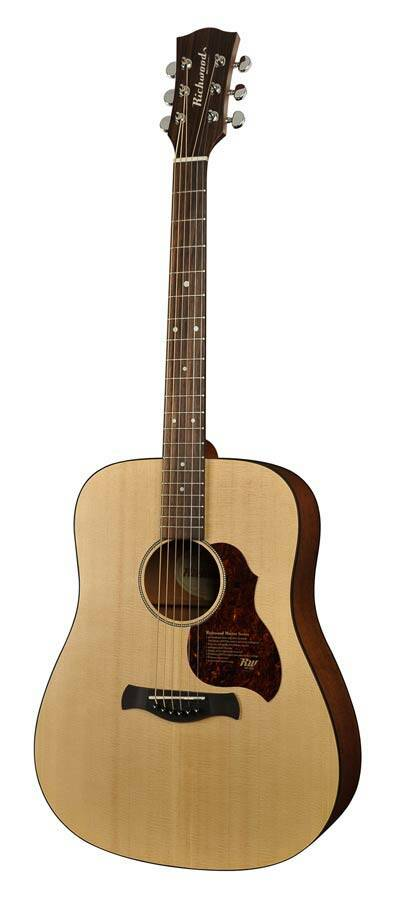 Richwood Master Series D20E Dreadnought EQ