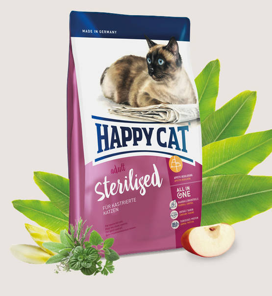 Happy cat sterilised