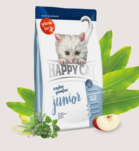Happy cat junior graanvrij